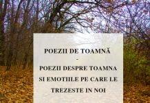 poezii de toamna