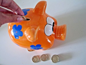 savings, economisire